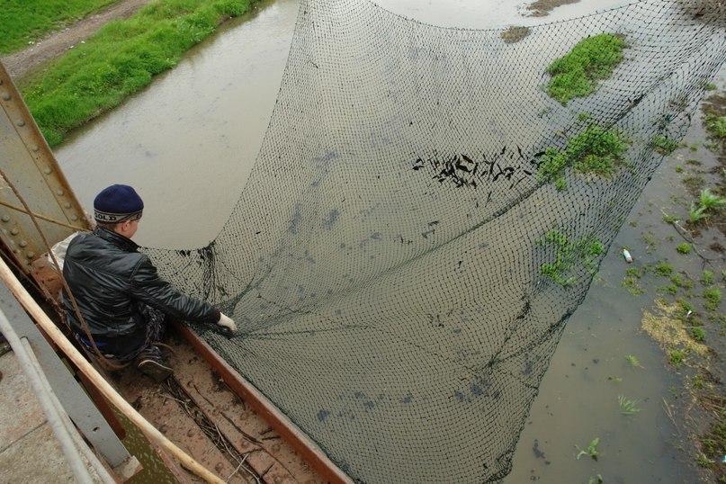 купить рыболовную сеть на подъемник